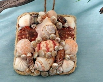 Sea shell ornament square