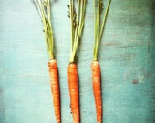 Spring art . Easter . cottage chic decor . Orange turquoise blue . kitchen wall art . farmhouse decor . food photography . Three Carrots
