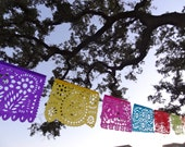 All Occasion (6 strands) Tissue Paper Papel Picado Banners for your Fiesta - Birthday, Bridal Shower, Rehearsal Dinner, cinco de mayo