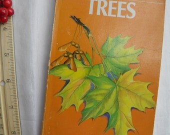 1956 Trees - A Golden Guide - Tree Identification Reference Book  - Illustrated in Color