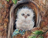 Owl Art Print children Nursery baby animal 8x10 kids decor