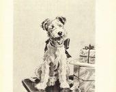 TERRIER Print, 1940s Dog Print, Morgan Dennis, Black & White Wall Decor, Art Illustration to Frame, Animal Print,  Home Decor