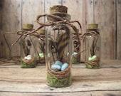 50 Miniature Bird Nest Terrarium Necklace customizable spring wedding favor wholesale Handmade by Gypsy Raku