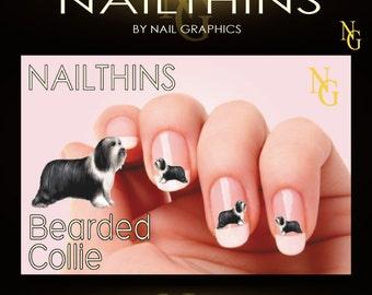 Bearded Collie Nail Decal  Nail Art Design NAILTHINS
