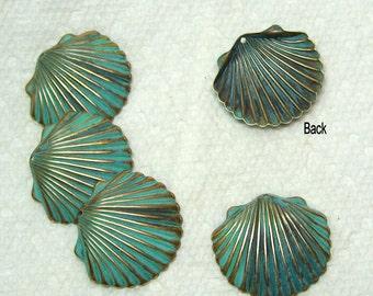 Brass Seashell In Verdigris Medium Size  6 Pieces