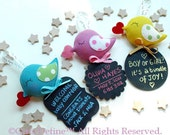 Baby Greetings Bird to record baby birth, baby growth, pregnancy with rewriteable chalkboard for personalized message (FREE BABY CARD)