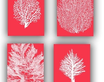 Seafan art, Sea fan Collection Prints, Set of 4, 11x14, Vintage illustrations in pink red, Nautical Art, beach cottage, Coastal living decor