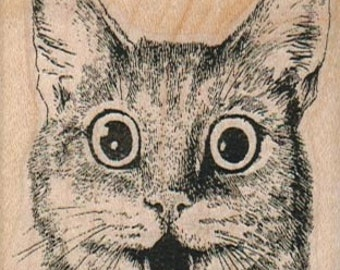 Cat  rubber stamp, wood mounted art and craft supplies   number645