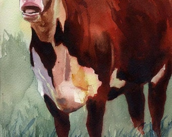 Hereford cow art Print of my watercolor painting