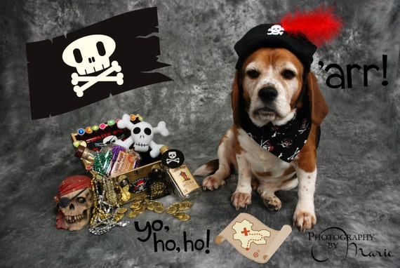 Reversible pirate skulls and crossbones black dog bandanna Halloween