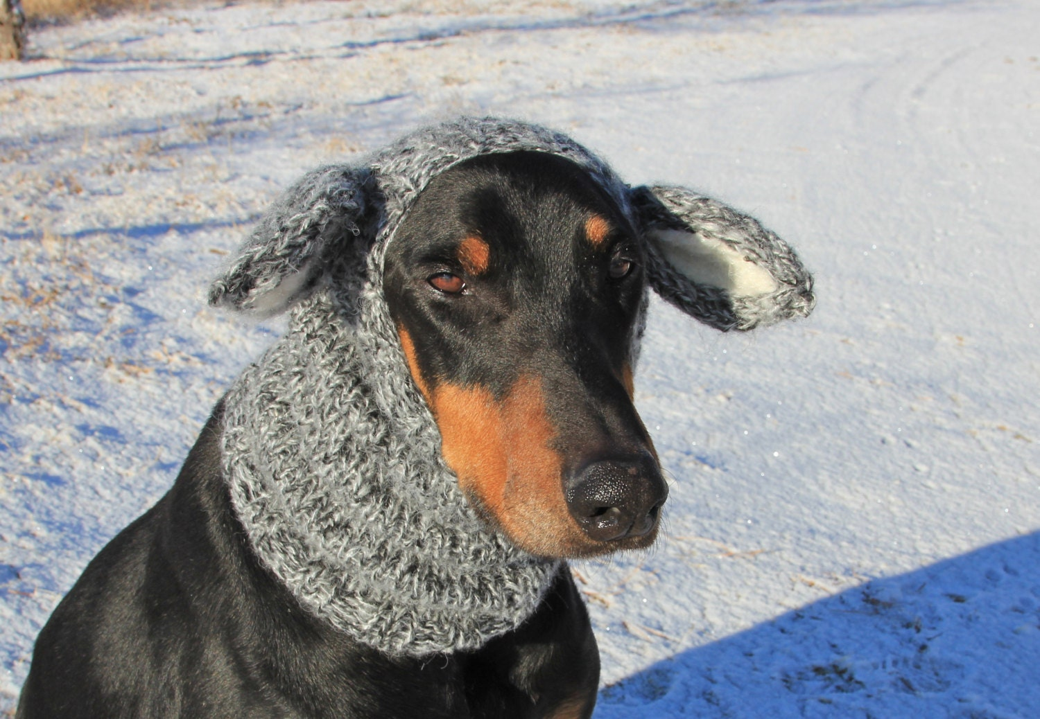 Hand Knitted Dog Snood with ears warm and cute goat by ...
