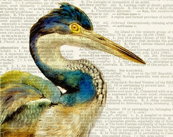 Heron Bird dictionary print