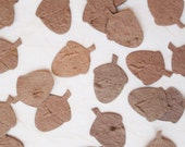100 Seed Paper Acorn Fall Wedding Favors - Plantable Paper Acorns Confetti - Woodland Wedding Favors - Oak Tree Favors