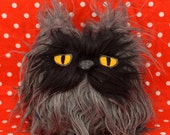 Little Colonel Meow