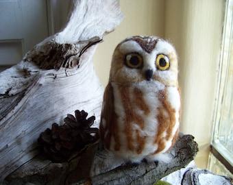 Needle Felted Life Size Saw Whet Owl