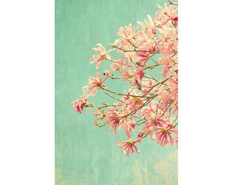 Star Magnolia Print, Pink Mint Decor, French Country Home, Flower Photography, Magnolia Art, Bedroom Decor