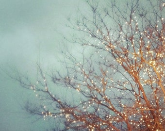 Fine Art Photo, December Lights, Tree Lights, Nature Photography, Bare Branches, Blue Sky, Winter Art, Holiday Home Decor