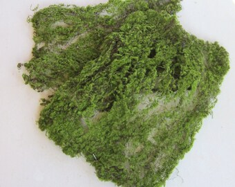 Moss Sheet for Miniature Garden, Terrarium, Craft, Artificial Green Sheet Moss