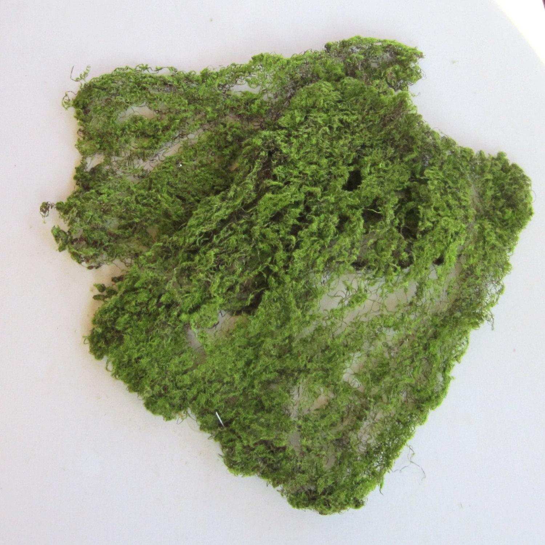 moss sheet artificial green sheet moss for terrarium craft. Black Bedroom Furniture Sets. Home Design Ideas