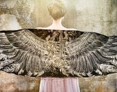 Black Wings scarf and feathers, Hand painted, printed, stunning unique and useful, perfect gift