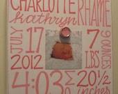 Baby Girl Birth Information Canvas Frame
