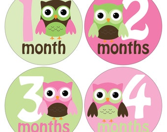 12 Monthly Baby Milestone Waterproof Glossy Stickers - Just Born - Newborn - Weekly stickers available - Design M033-01