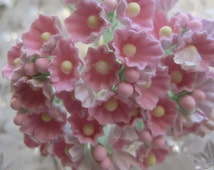 One Bouquet Of Forget Me Nots Flowers An Old Fashioned Favorite Soft Pink
