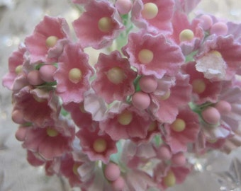 Forget Me Nots Flowers An Old Fashioned Favorite Soft Pink 1 Bouquet
