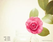 Flower Photograph Photo - Pink, rose, love, minimal, fresh, shabby chic - Flowers of Love I - 8 x 10 Fine Art Print