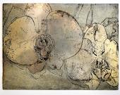 Orchids: Metal Etching Printing Plate - EmilyJeffords