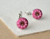 Hot pink earrings - dangle leverback - daisy flower earrings