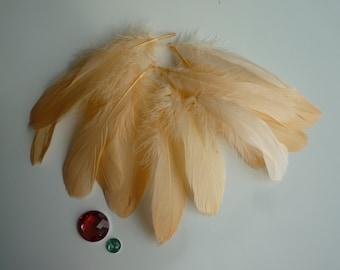 VOGUE GOOSE NAGOIRE Loose Feathers , Peach  Papaya  / 299