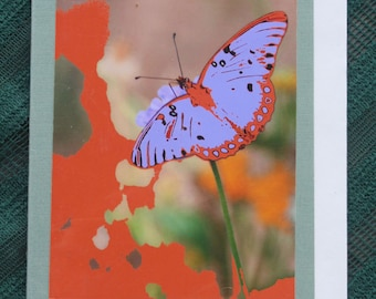 Nature Greeting Cards (blank inside)