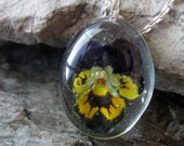 Preserved Viola in resin on Sterling Chain