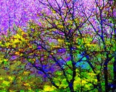 Stained Glass 16x20 Tree Photography Modern Wall Art Abstract Purple Color Nature Print