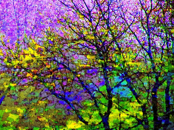 Stained Glass 16x20 Tree Photography Modern Wall Art Abstract Impressionism  Purple Color Nature Print