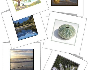 Mini cards New Zealand nature theme Printable instant download Set of 6 plus envelope template, beach, sea urchin, fern NZ nature card