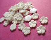Cabochon flower - 6 shell cabochons flower off white 12mm  (CA400)