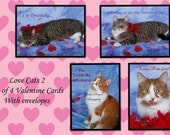 Love Cats set of 4 Valentine Photography cards with envelopes