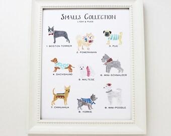 Art Print 8 x 10 -Smalls Dog Collection