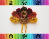 PATTERN-Crochet Turkey Appliqué-Detailed Photos