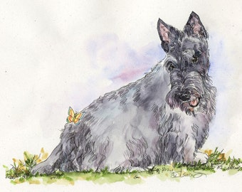 SCOTTISH TERRIER w Butterfly Original Watercolor on Ink Print Matted 11x14 Ready to Frame