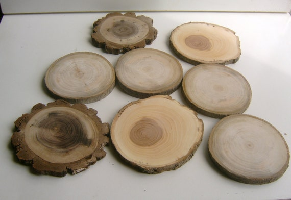 Reserved 8 LargeCoaster Size Tree Branch Slices 3- 4 inch