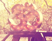 FREE SHIPPING Sale!  Vintage Marquee Lights - Yoga OM symbol