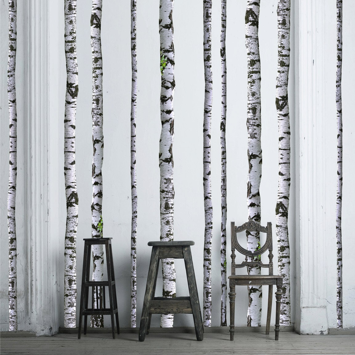 Birch tree wall decals 9 ft tall quantity of 5 for Birch tree wall mural