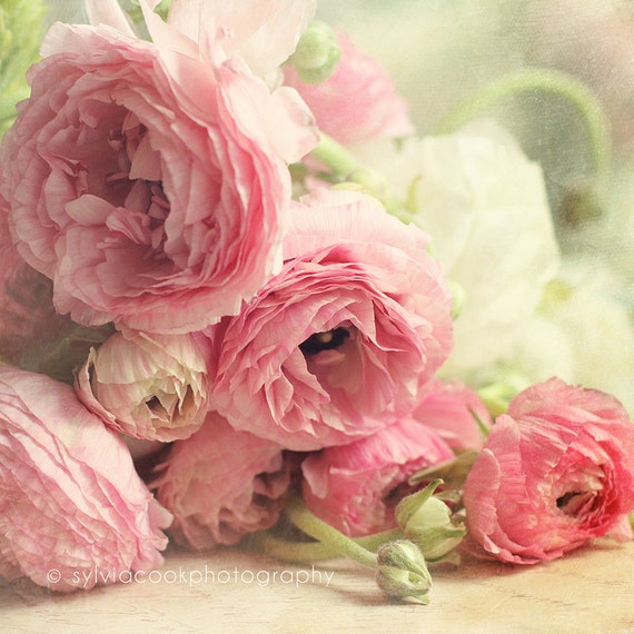 "pink ranunculus fine art print,shabby chic decor, ""The first bouquet"",pastel photograph,floral photography,pink,green,flowers,square print"