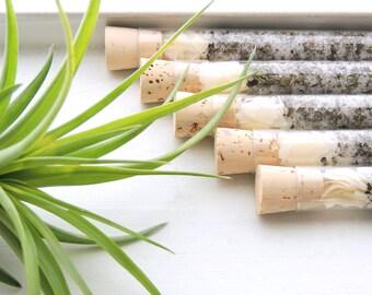 Organic & All Natural Coconut Basil Herbal Bath Salt Test Tubes. (Enliven Bath Affirmations) Mother's Day, Eco, Spa, Luxury Gift Set.