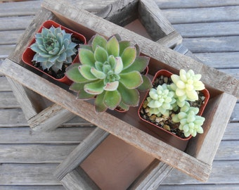 4  Rustic Wood Boxes, Centerpiece, Decor, Planter, Barn Wedding, Reclaimed Wood, Rustic Wood Container