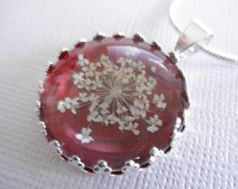 Peace-Queen Anne's Lace Beneath Glass Atop Glowing Burgundy Background Victorian Pressed Flower Crown Pendant-Symbolizes Peace