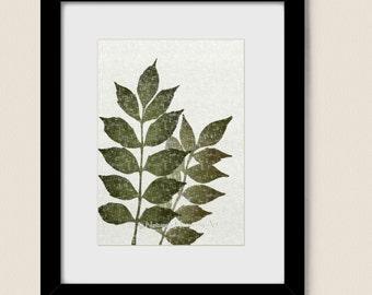 5 x 7 Botanical Art Print Vintage Style Home Decor, Green Leaves Wisteria Plant Art, Natural Colors, Leaf Print